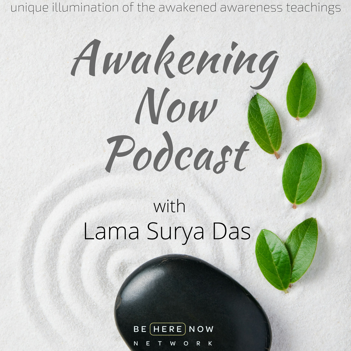 Awakening Now with Lama Surya Das